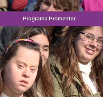 Promentor-_355